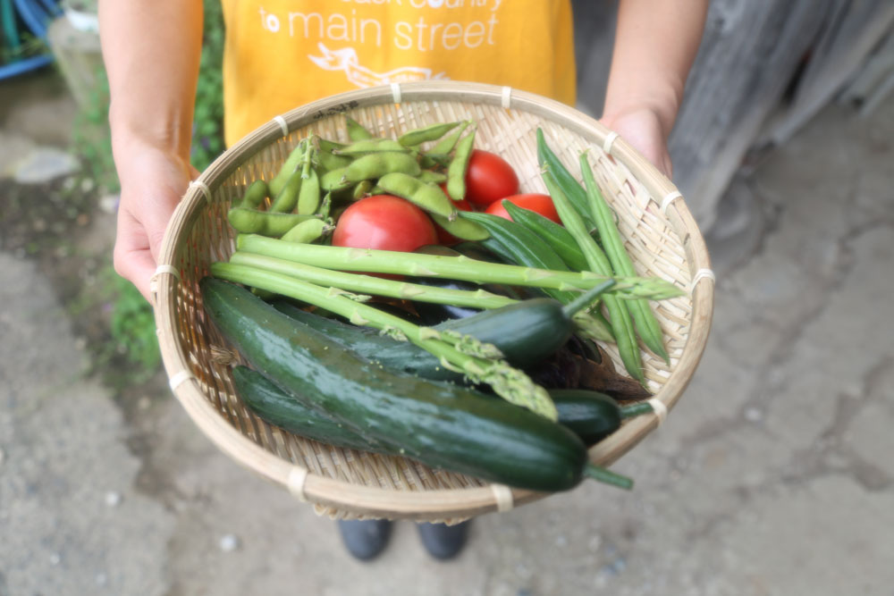 トマト、ナス、オクラ、きゅうり、枝豆などなど、いろんな種類の野菜は夜のBBQと2日目の朝食でいただきました!