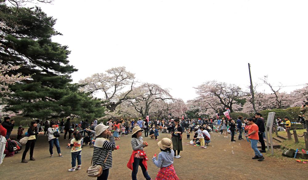 2014年から2年連続で開催された「100人のしゃぼん玉大作戦」インターネットの呼びかけで集まった参加者が12:30の時刻と同時に一斉にしゃぼん玉を吹いた。(写真は2015年の様子)